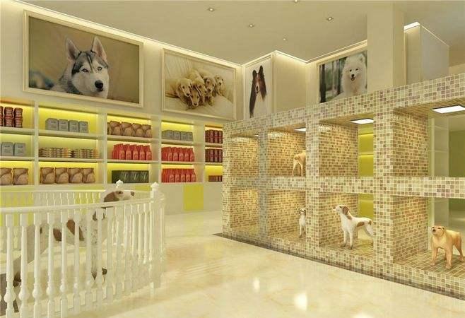 杭州宠物店装修-宠物们都喜欢的宠物店装修图